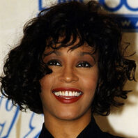 Whitney 3281830a