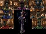 Spettri Guardiani
