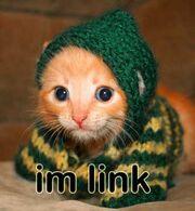 Iz-a-cute-cat