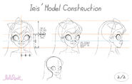 Iri's model construction (2)