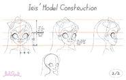 Iris' Model Construction2