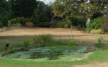 AS Pond