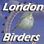 Londonbirdersnew