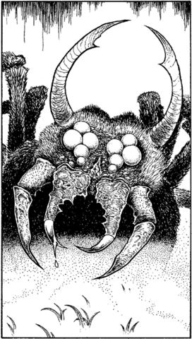 File:Taan-Spider.png