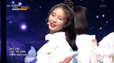 뮤직뱅크 Music Bank - Butterfly - LOONA(이달의 소녀)