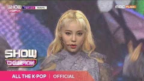 Show Champion EP.306 LOONA - Butterfly