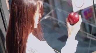 이달의소녀탐구 241 (LOONA TV 241)