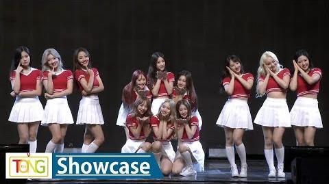 LOONA(이달의 소녀) 'Hi High' Showcase Stage (하이 하이, + +, 플러스 플러스)