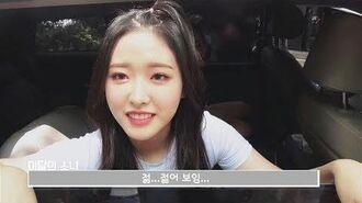 이달의소녀탐구 378 (LOONA TV 378)