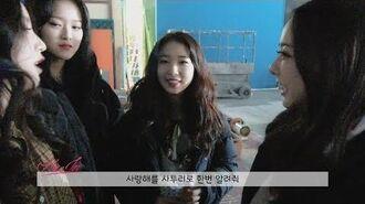이달의소녀탐구 295 (LOONA TV 295)