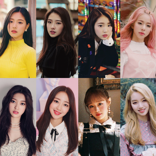 Alternative resolution image with all 12 members