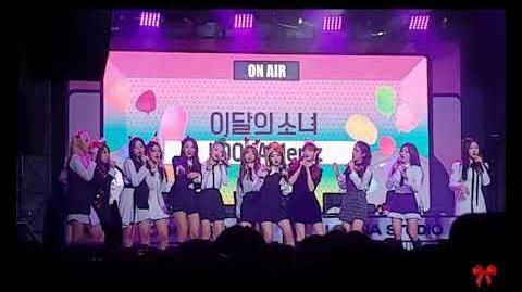 181125 LOONA 이달의 소녀 - Perfect Love fancam by brr