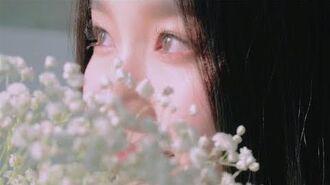 이달의소녀탐구 266 (LOONA TV 266)