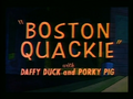Boston Quackie.png