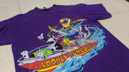 Vintage 90's LOONEY Tunes cartoons tazmania tweety sylvester bugs bunny purple colour Large size t shirt