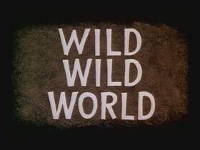 08-wildwildworld