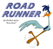 Road Runner Profile and Quote