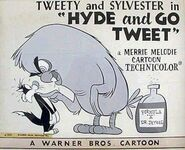 Looney Tunes Hyde and Go Tweet-867532932-large