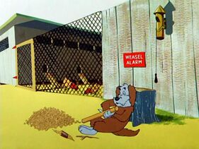 Weasel Stop-0