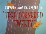 Tree Cornered Tweety