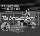 The Bermuda Short