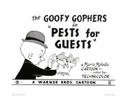 F95838c4b4414c673937f2eb221de324--gopher-warner-bros