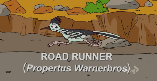 File:Road Runner.png
