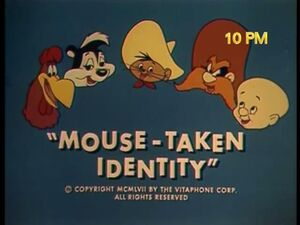 Mouse Taken Identity TV Titles