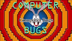 Computer Bugs