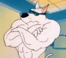 Arnold el Pit bull