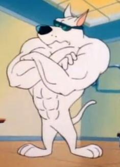 Arnold Pitbull