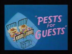Pests-For-Guests
