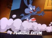 Calamity Coyote Latin Name