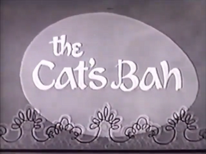 The Cat's Bah TBBS
