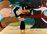 What Makes Daffy Duck (6)