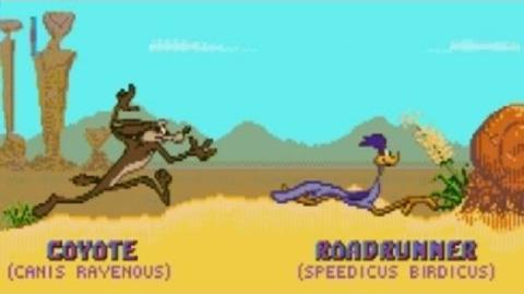 Desert Demolition Starring Road Runner and Wile E