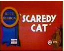 Scaredy Cat Blue Ribbon