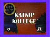 Katnip5