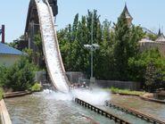 Bugs-white-water-rapids-zjtD