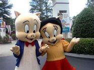 Porky y Petunia en Six Flags
