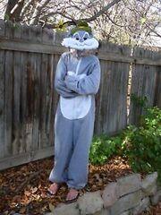 Slappy Squirrel costume