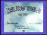 Ceiling Hero