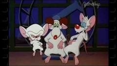 The mice...plus Larry!