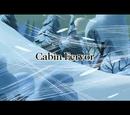 Cabin Fervor