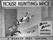 House-hunting-mice