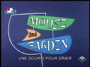 866 - C1 - Mouse and Garden (63 - Une souris pour dîner) 16626000