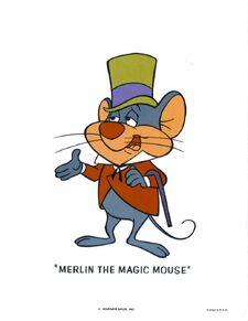 Merlin PIC