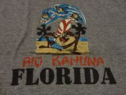 Vintage 80's Looney Tunes TAZ SURFING FLORIDA 1986 T Shirt