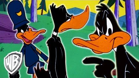 Looney Tunes - Daffy Duck Has Had Enough! - Classic Cartoon Compilation