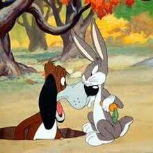 Tex Avery Looney Tunes Wiki Fandom